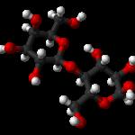 Lactoza