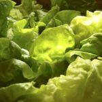 Salata andaluza si salata cu fructe