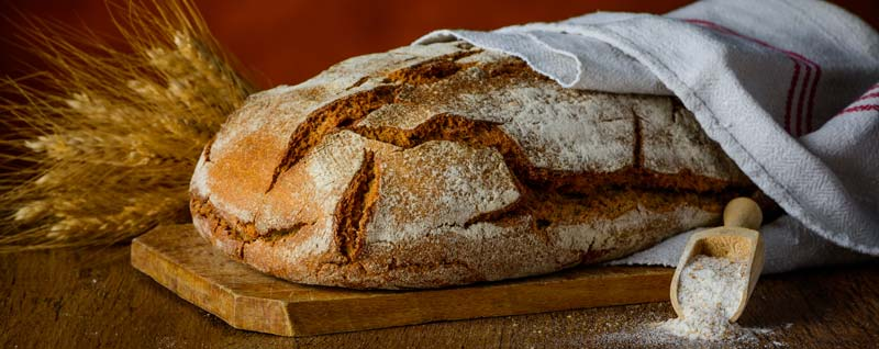 paine-neagra-calorii