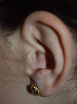 ceara-urechi