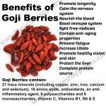 Goji Berry – supliment alimentar pe baza de fructe de goji