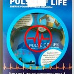 Bratara Pulse of Life