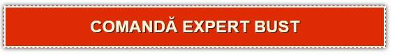 comanda-expertbust
