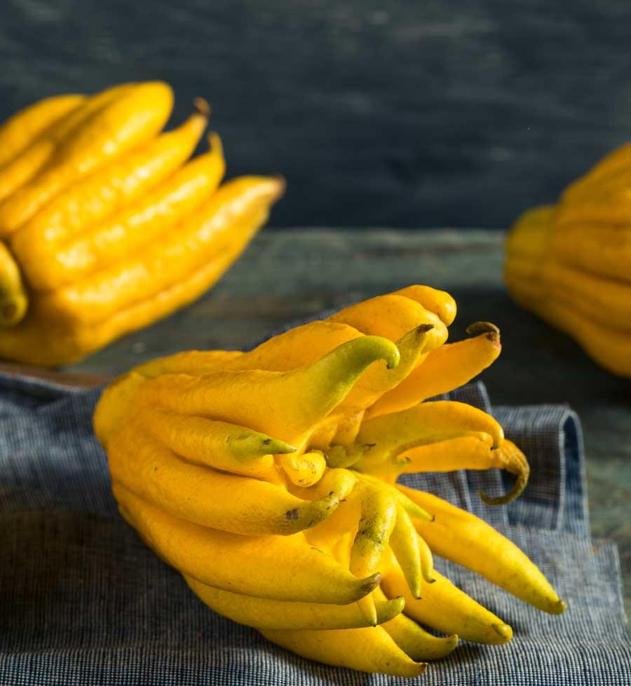 Citron-cu-degete---fructe-cu-tepi