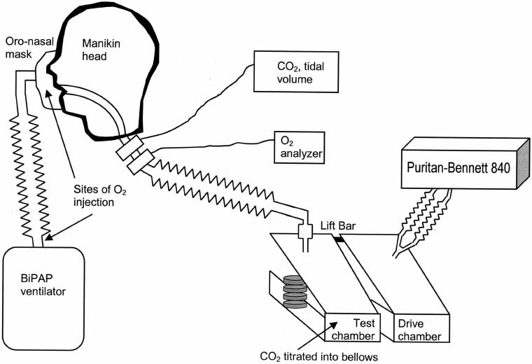 apnee-Bilevel-Positive-Airway-Pressure