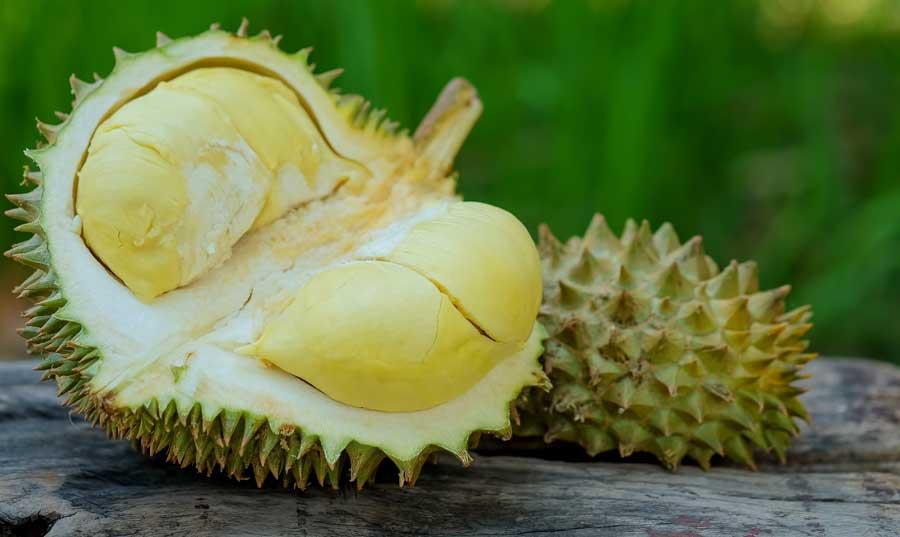 fructe-cu-tepi-Durian