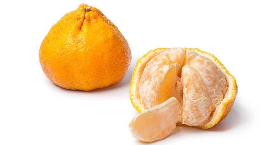 ugli-fruct-cu-tepi