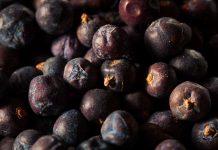 fructe-de-ienupar-uscate-beneficii