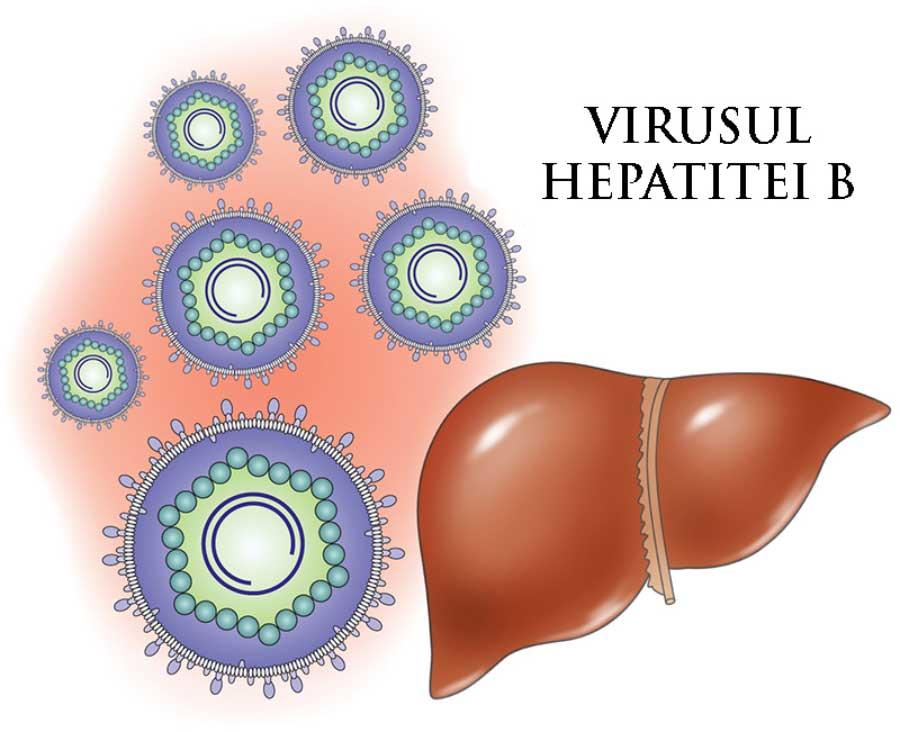 hepatita-b