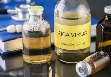virusul-zika