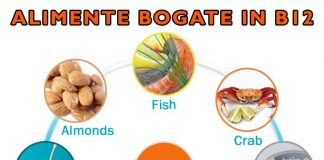 vitamina-b12-alimente