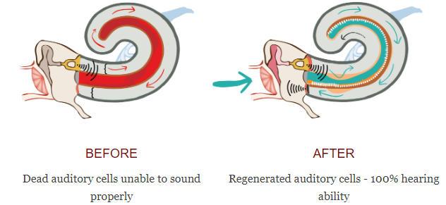 Efecte Nutresin HerbalPuere Ear